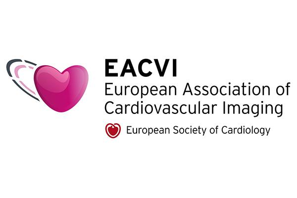 Совещание «Мозговой штурм» секции ядерной кардиологии и компьютерной томографии сердца