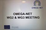 Участие Гиндюка А.В. в заседании рабочей группы и организационного комитета