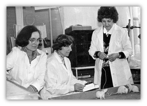 Подготовка к токсилогическому эксперименту (1980-е годы)
