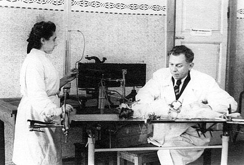 Г. В. Савостенко и Н. И. Ценцевицкая проводят эксперимент