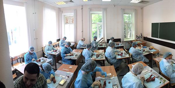 Практический тур предметной олимпиады по хирургической стоматологии